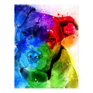 The colors of Love are a Pitbull Postcard