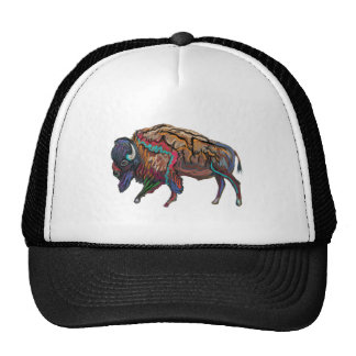 THE COLORS REVEALED TRUCKER HAT