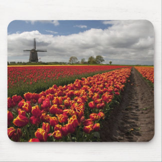 The Colour of Spring Mouse Pad