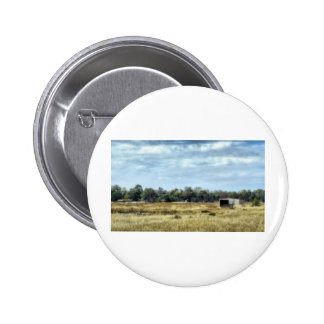 The Colour of Summer - Australia Pinback Buttons
