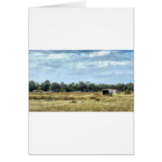 The Colour of Summer - Australia Greeting Card