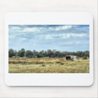 The Colour of Summer - Australia Mouse Pad