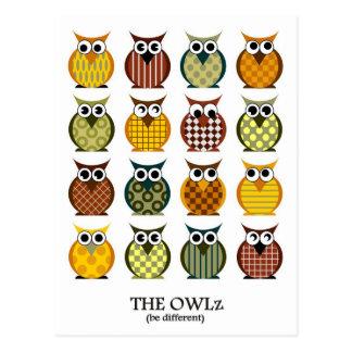 The coloured Owlz Postcard