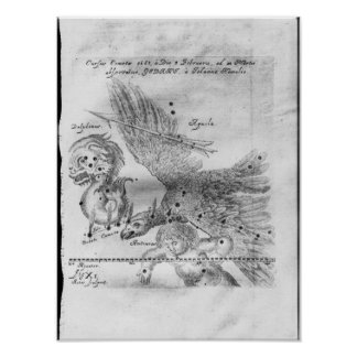 The Comet discovered and observed by Johannes Poster