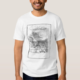 The Comet discovered and observed by Johannes T-Shirt