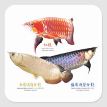 The commodity is customized square sticker
