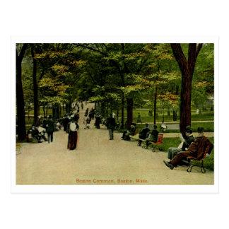 The Common, Boston, MA 1915 Vintage Postcard