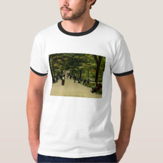 The Common, Boston, MA 1915 Vintage T-Shirt