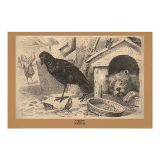 The Common Raven Posters