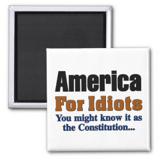 The Constitution: America for Idiots Magnet