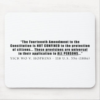 The Constitution Applies to ALL PERSONS Mouse Pad