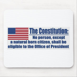 The Constitution Says.... Mouse Pad