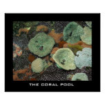 The coral pool print