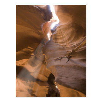 The Corkscrew in Upper Antelope Canyon, Navajo Postcard