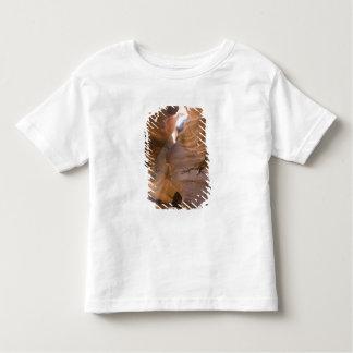 The Corkscrew in Upper Antelope Canyon, Navajo Toddler T-shirt