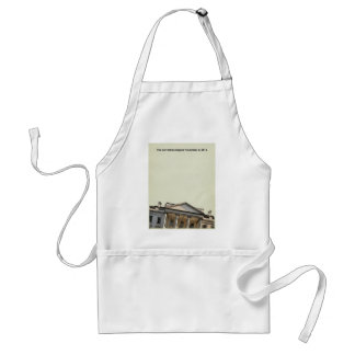 The Correction Begins  11-8-2016 Adult Apron