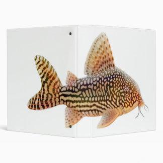 The Corydoras Sterbai Catfish Binder
