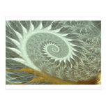 The Cosmic Spiral - Sacred Geometry Golden Spiral Post Card