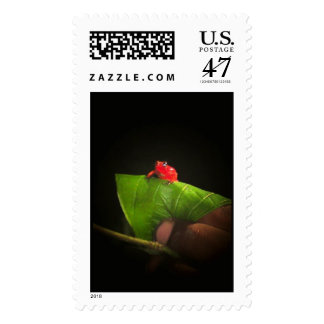 The Costa Rican Postage