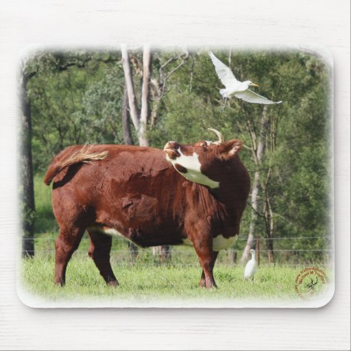 The Cow and the Great Egret 9Y527D-008 Mouse Pad