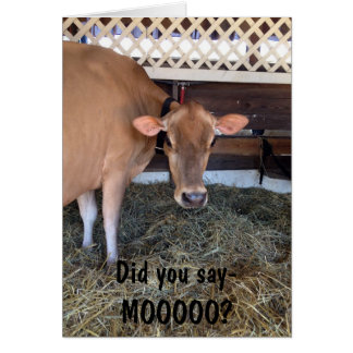 "THE COW ASKS ""DID U SAY MOO?""/LOVE YOU, TOO CARD"