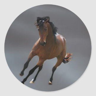 The cowboy horse called Riboking Classic Round Sticker