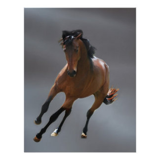 The cowboy horse called Riboking Custom Letterhead
