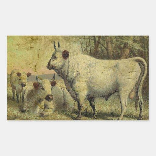 The Cows Came Home Rectangular Sticker