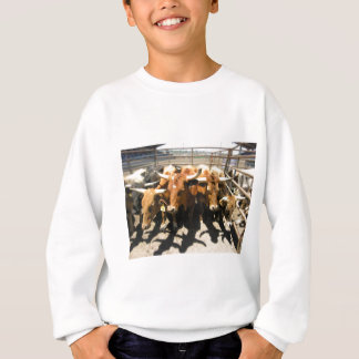 The cows came home sweatshirt