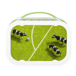 The cows playing soccer replacement plate