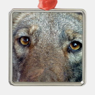 The Coyote 2 Metal Ornament