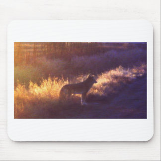 THE COYOTE MOUSE PAD