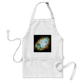 The Crab Nebula M1 NGC 1952 Taurus A Adult Apron
