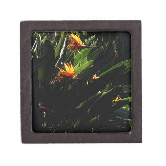The Crane Flower Premium Keepsake Boxes