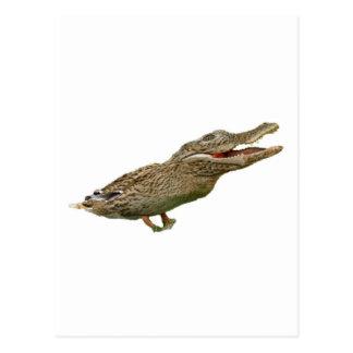 The Crocoduck Postcard
