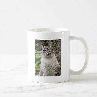 The cross eyed cat mugs