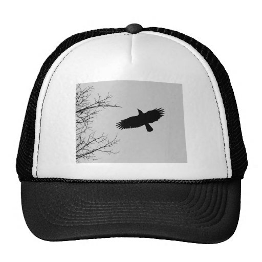 The Crow Hat