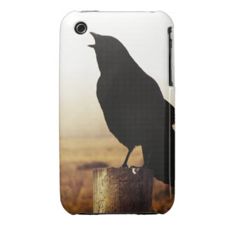 The Crow iPhone 3 Case-Mate Case