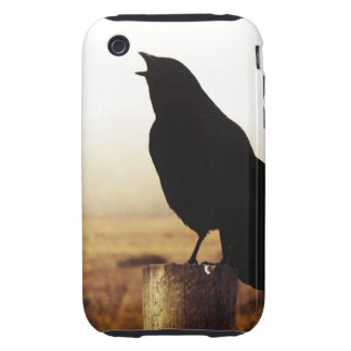 The Crow iPhone 3 Tough Cover