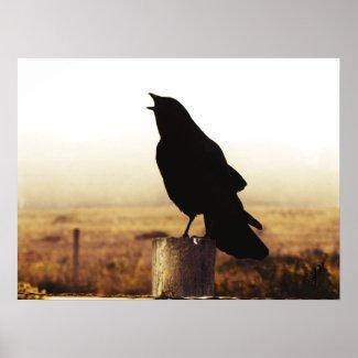 The Crow print