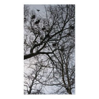 The Crows Small Photo Card Double-Sided Standard Business Cards (Pack Of 100)