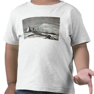 The cruise of the Pandora T Shirts