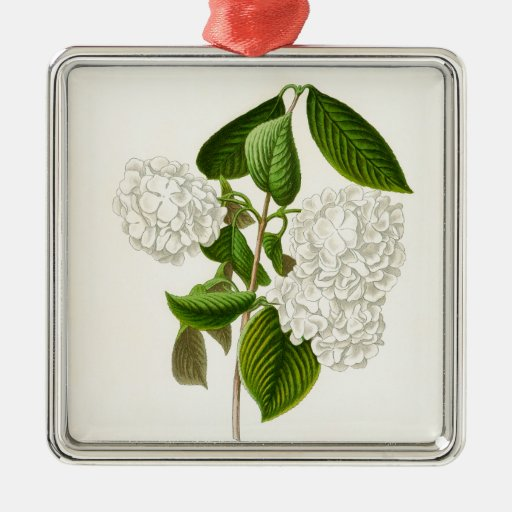 The Crumpled Gueldres Rose Metal Ornament