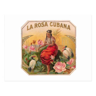 The Cuban Rose Vintage Design Cuba Postcard