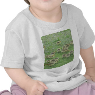 The Cuddly Hoard T Shirt