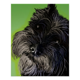 The Curious Schnauzer Poster
