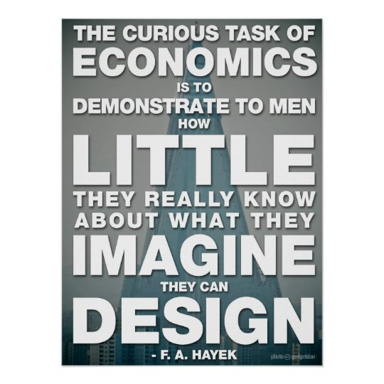 The Curious Task of Economics Poster
