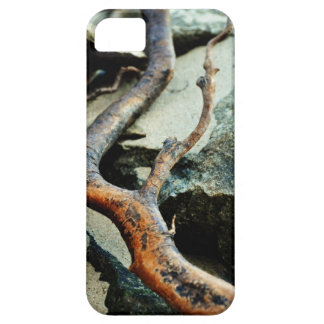 The Curving Branch iPhone Case