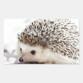 The Cute Baby Hedgehog Rectangular Sticker