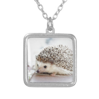 The Cute Baby Hedgehog Silver Plated Necklace